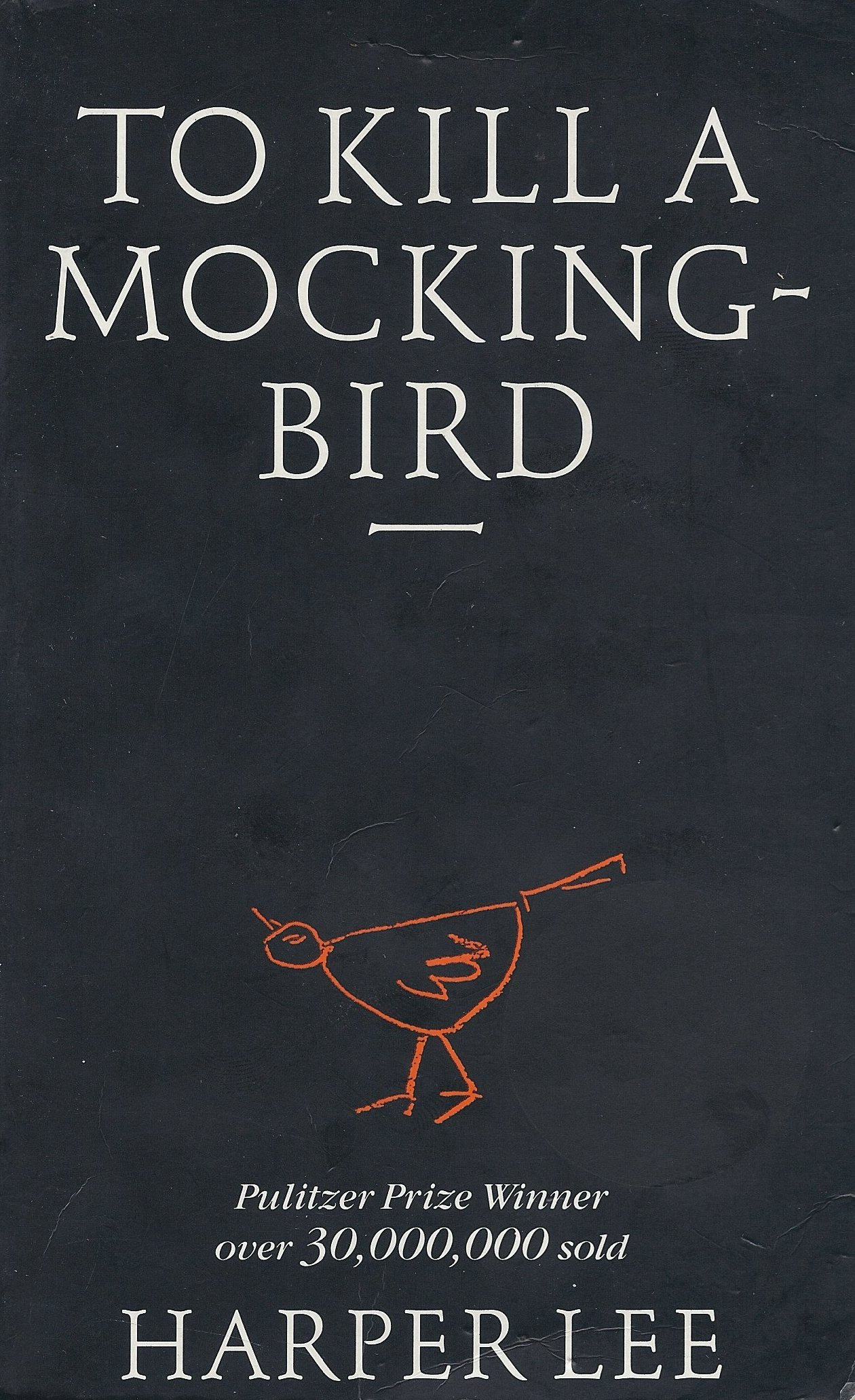 a literary analysis of the novel to kill a mockingbird by harper lee Fears about following up her classic novel to kill a mockingbird with the idea that harper lee never wanted this book mystery of the literary.