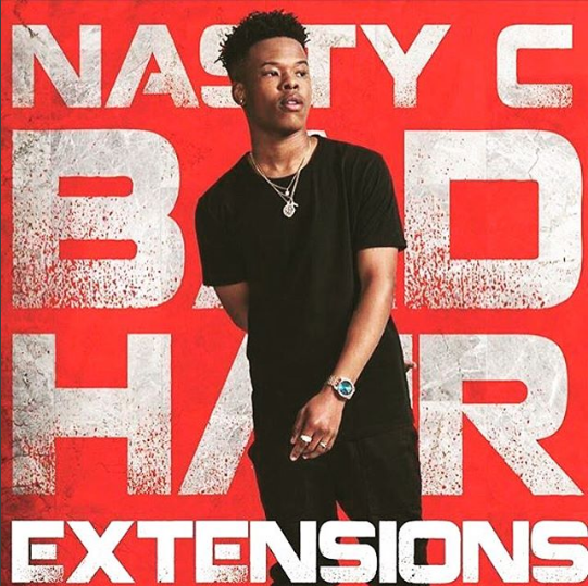 nasty-c-bad-hair-extensions-art